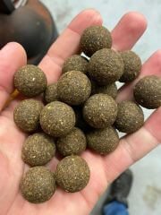 HEMP & HALIBUT INSECT Squid Boilies 20mm 5Kg Heilbutt Pellets